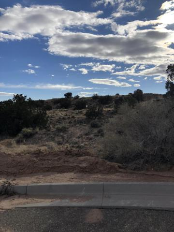 2309 Desert Marigold Road NE, Rio Rancho, NM 87144 (MLS #936852) :: Campbell & Campbell Real Estate Services