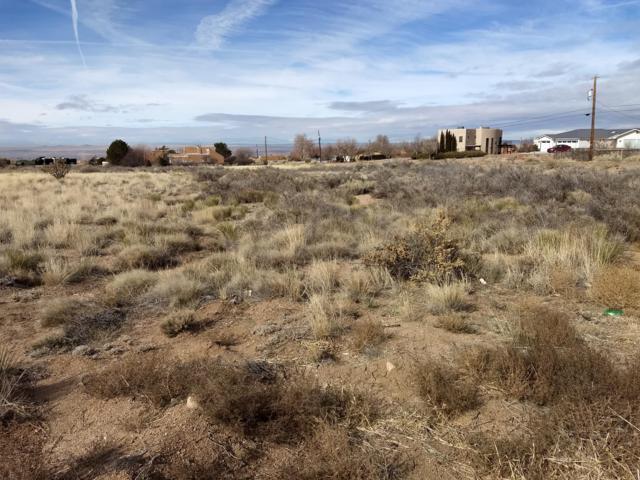 006 Del Rey Avenue NE, Albuquerque, NM 87122 (MLS #936872) :: Campbell & Campbell Real Estate Services