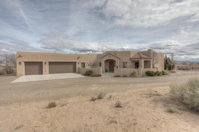 728 Trujillo Lane, Corrales, NM 87048 (MLS #936892) :: Campbell & Campbell Real Estate Services