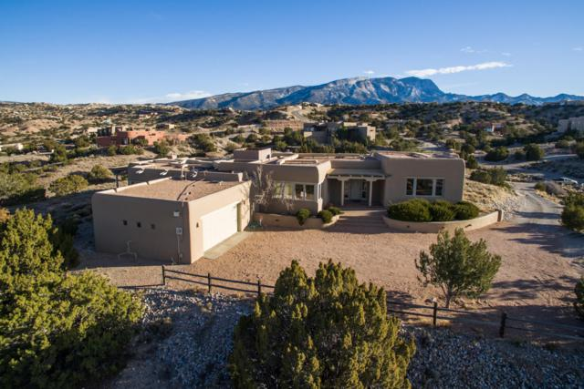 146 Camino Barranca, Placitas, NM 87043 (MLS #936906) :: Campbell & Campbell Real Estate Services