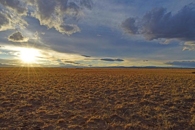 Lot 475 Harrison Road, Belen, NM 87002 (MLS #936908) :: The Bigelow Team / Realty One of New Mexico