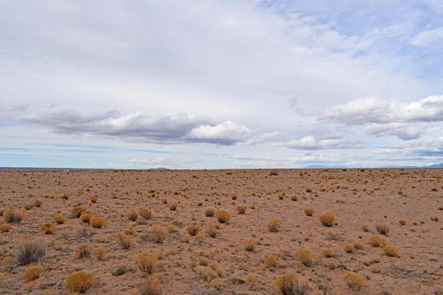 Lot 8 Rio Grande Estates, Veguita, NM 87062 (MLS #936915) :: The Bigelow Team / Realty One of New Mexico