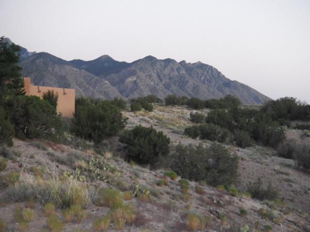 35 Placitas Vista De La Montana Loop, Placitas, NM 87043 (MLS #936969) :: Campbell & Campbell Real Estate Services