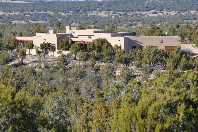 896 Deer Canyon Trail, Mountainair, NM 87036 (MLS #937235) :: Campbell & Campbell Real Estate Services
