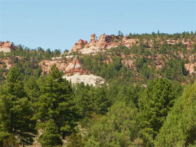 Lot 4 East Elk Drive, Ramah, NM 87321 (MLS #937317) :: Campbell & Campbell Real Estate Services
