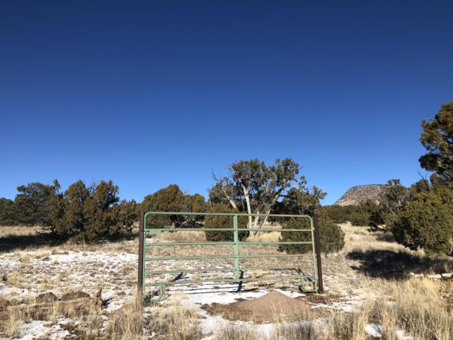 171 Sugarloaf Trail, Datil, NM 87821 (MLS #937321) :: Campbell & Campbell Real Estate Services