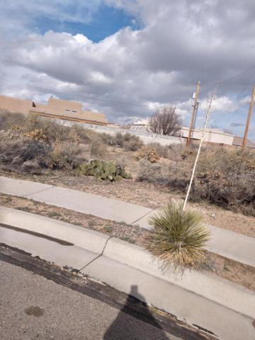 0 Olympic Place NW, Albuquerque, NM 87114 (MLS #937327) :: The Buchman Group