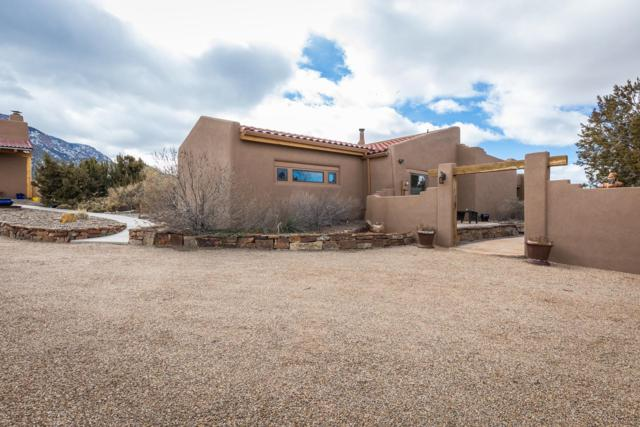 31 Tunnel Springs Road, Placitas, NM 87043 (MLS #937394) :: Silesha & Company