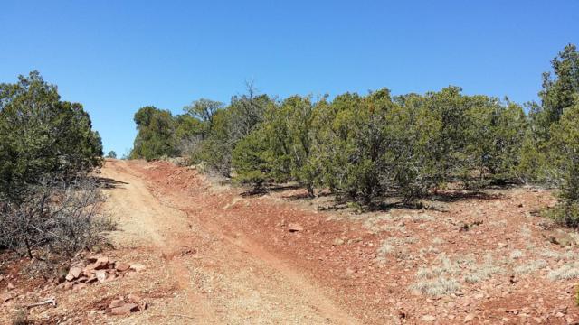 Camino De Avila, Tijeras, NM 87059 (MLS #937418) :: Your Casa Team
