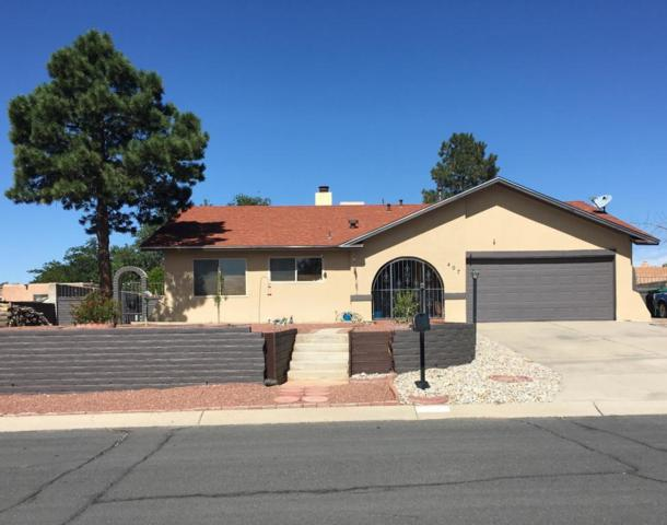 407 Cabeza Negra Drive SE, Rio Rancho, NM 87124 (MLS #937534) :: Campbell & Campbell Real Estate Services