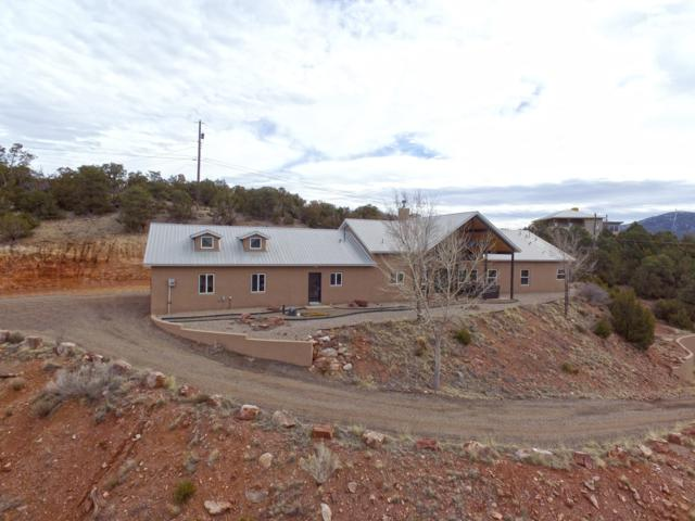 46 Turquoise Trail, Tijeras, NM 87059 (MLS #937605) :: Campbell & Campbell Real Estate Services