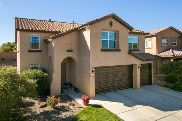24 Paseo Vista Loop NE, Rio Rancho, NM 87124 (MLS #937651) :: The Bigelow Team / Realty One of New Mexico