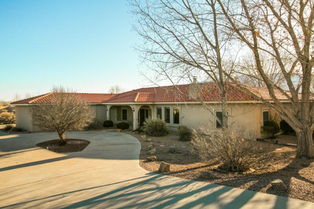 105 Calle Contenta, Corrales, NM 87048 (MLS #937672) :: Your Casa Team