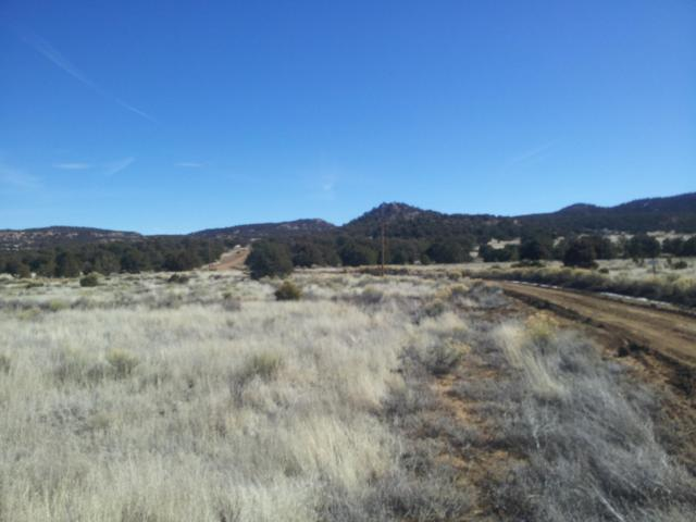 Broken Arrow Court Road, Pie Town, NM 87827 (MLS #937678) :: Campbell & Campbell Real Estate Services