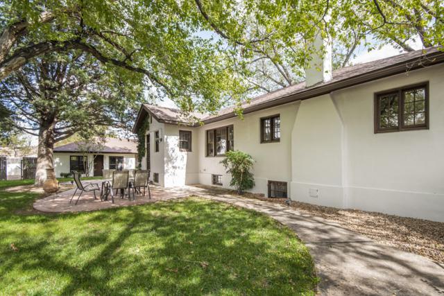 1201 Las Lomas Road NE, Albuquerque, NM 87106 (MLS #937683) :: Campbell & Campbell Real Estate Services