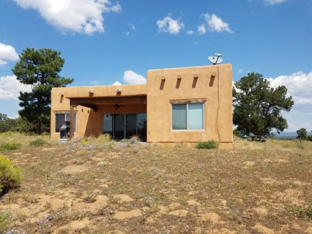 69 James Valley Road, Ramah, NM 87321 (MLS #937775) :: Silesha & Company