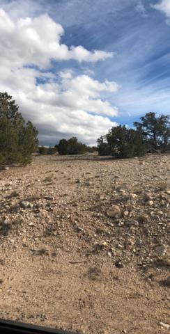 Tres Vidas Ridge, Placitas, NM 87043 (MLS #937778) :: Your Casa Team