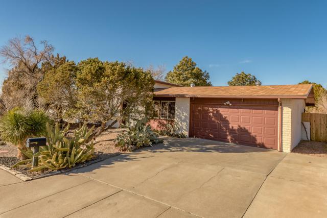 12505 Mountain Road NE, Albuquerque, NM 87112 (MLS #938003) :: Your Casa Team