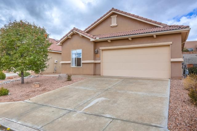 1031 Desert Willow Court, Bernalillo, NM 87004 (MLS #938083) :: Campbell & Campbell Real Estate Services