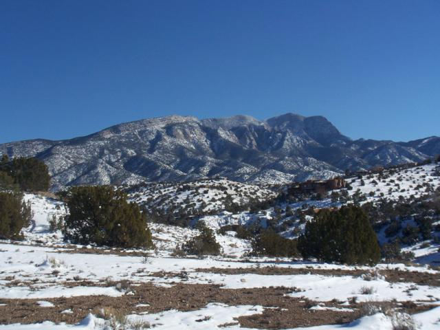 42 Calle Del Norte, Placitas, NM 87043 (MLS #938136) :: Campbell & Campbell Real Estate Services