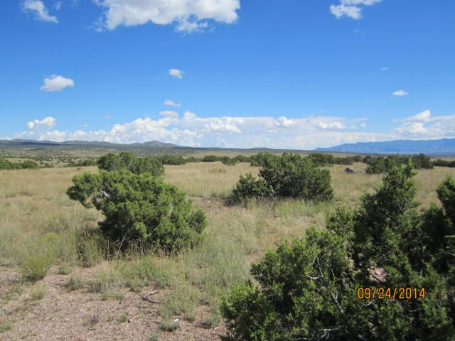 Lot 187 Pinon Springs Ranches, Magdalena, NM 87825 (MLS #938147) :: Campbell & Campbell Real Estate Services