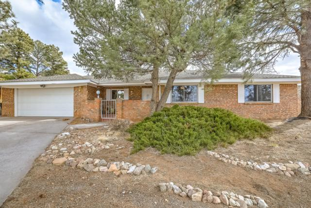 4614 Larchmont Drive NE, Albuquerque, NM 87111 (MLS #938241) :: Campbell & Campbell Real Estate Services