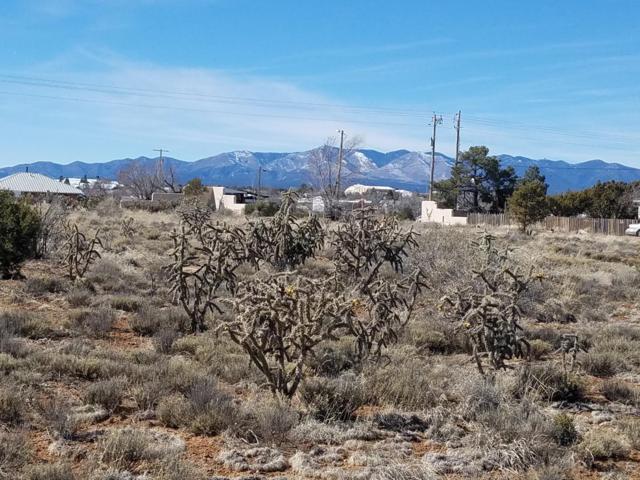 805 Ross Street, Mountainair, NM 87036 (MLS #938269) :: The Buchman Group