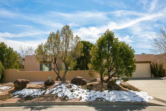8201 Indigo Avenue NE, Albuquerque, NM 87122 (MLS #938339) :: Silesha & Company