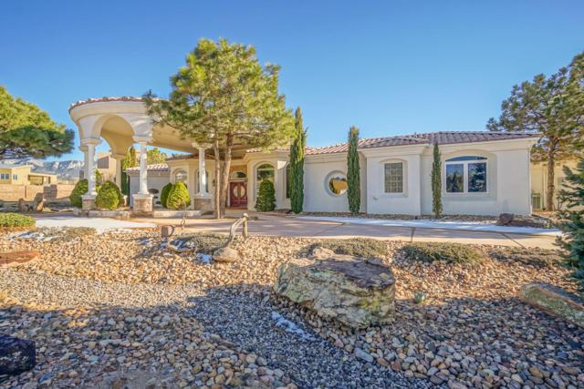 11100 San Bernardino Avenue, Albuquerque, NM 87122 (MLS #938354) :: Campbell & Campbell Real Estate Services