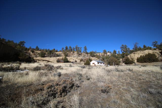Los Pinos County Road, Cuba, NM 87013 (MLS #938406) :: The Bigelow Team / Realty One of New Mexico