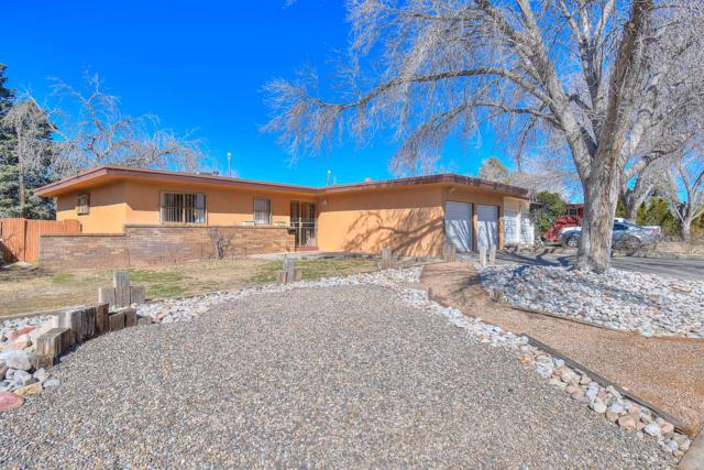 1217 Parsifal Street NE, Albuquerque, NM 87112 (MLS #938443) :: Campbell & Campbell Real Estate Services