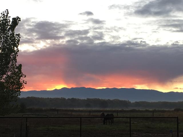 35 Eusebio Road, Belen, NM 87002 (MLS #938446) :: The Bigelow Team / Realty One of New Mexico
