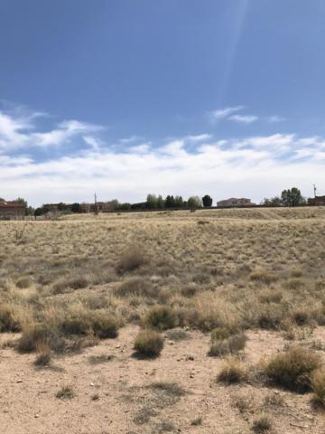 Palomas Avenue NE, Albuquerque, NM 87122 (MLS #938551) :: Campbell & Campbell Real Estate Services
