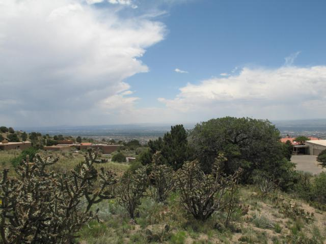 15 La Cueva Trail NE, Albuquerque, NM 87122 (MLS #938562) :: The Bigelow Team / Red Fox Realty