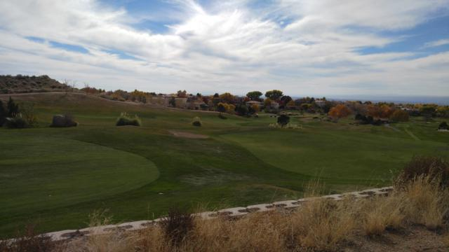 San Antonio-Burgundy Way Dr Drive NE, Albuquerque, NM 87122 (MLS #938566) :: The Buchman Group