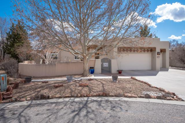 5912 Tierra Viva Place NW, Albuquerque, NM 87107 (MLS #938646) :: Campbell & Campbell Real Estate Services