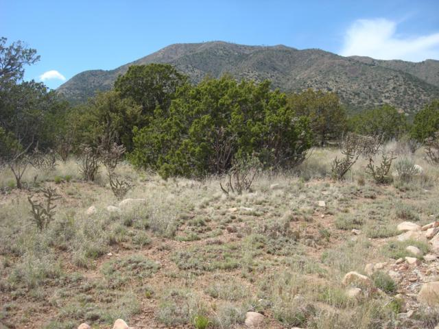 15 Skyview Road, Edgewood, NM 87015 (MLS #938694) :: Campbell & Campbell Real Estate Services