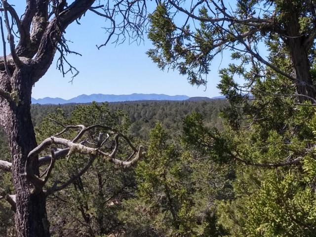 U2 Lot 21 Wild Horse Ranch Road, Pie Town, NM 87827 (MLS #938711) :: Campbell & Campbell Real Estate Services