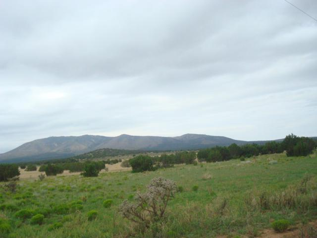Grand  Quivera Highway, Corona, NM 88318 (MLS #938726) :: Silesha & Company