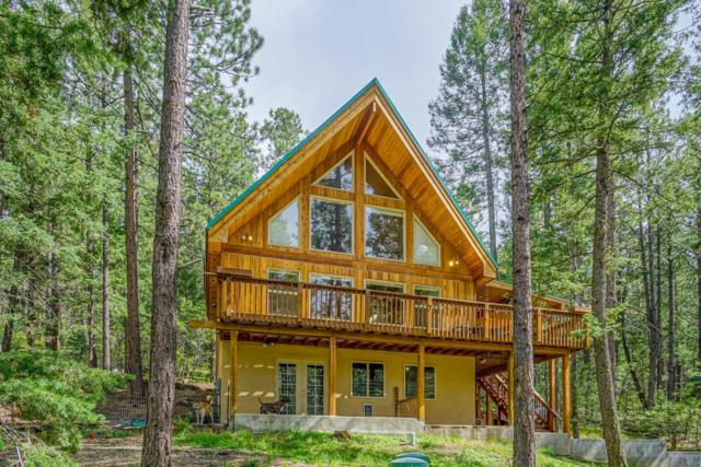 1222 Los Griegos Road, Jemez Springs, NM 87025 (MLS #938735) :: The Bigelow Team / Realty One of New Mexico