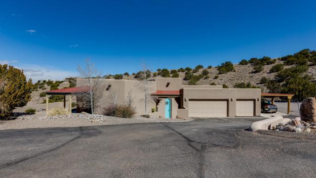17 Canoncito Road, Placitas, NM 87043 (MLS #938823) :: Campbell & Campbell Real Estate Services