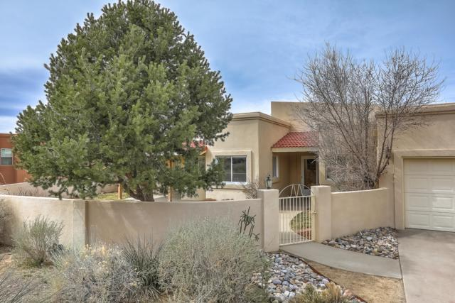 1505 Arenas Place SE, Albuquerque, NM 87123 (MLS #938833) :: The Bigelow Team / Realty One of New Mexico