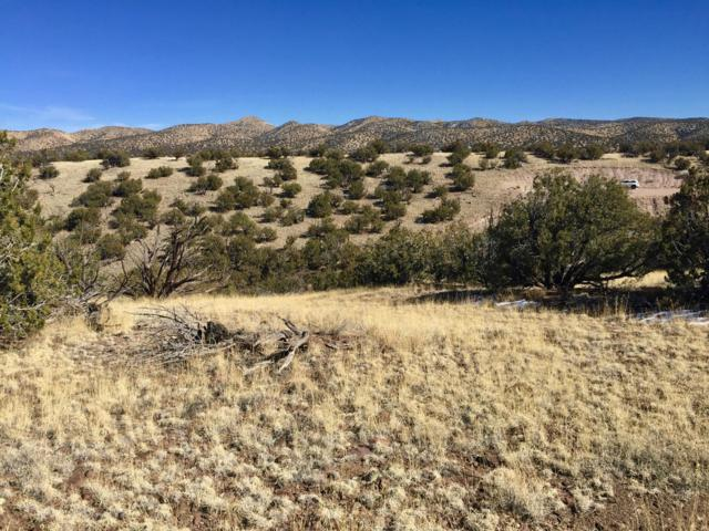 109 Abbe Springs Ranches, Magdalena, NM 87825 (MLS #938840) :: The Buchman Group