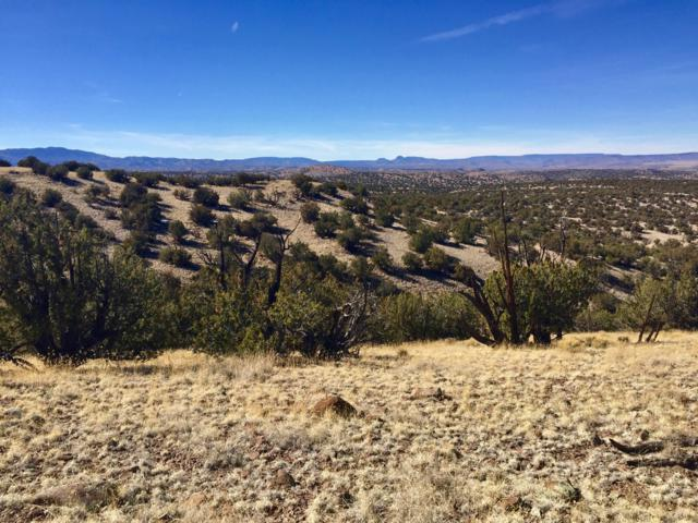 110 Abbe Springs Ranches, Magdalena, NM 87825 (MLS #938841) :: The Buchman Group