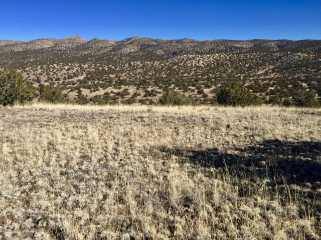 111 Abbe Springs Ranches, Magdalena, NM 87825 (MLS #938842) :: The Buchman Group