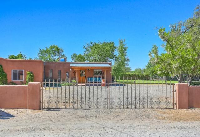 47 Perea Road, Corrales, NM 87048 (MLS #938847) :: Silesha & Company