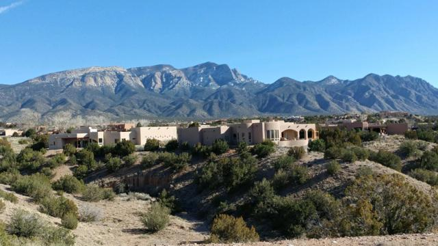 Meadows Ct  Lot 119-A, Placitas, NM 87043 (MLS #938886) :: The Bigelow Team / Realty One of New Mexico