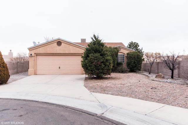 7520 Cerros Place NW, Albuquerque, NM 87114 (MLS #938955) :: The Bigelow Team / Realty One of New Mexico