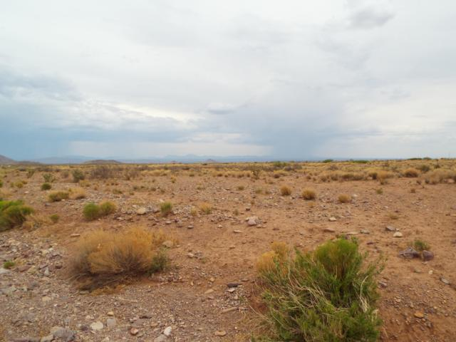 LOT 2-18 Willow Springs Ranch Road, San Antonio, NM 87832 (MLS #938969) :: The Bigelow Team / Realty One of New Mexico