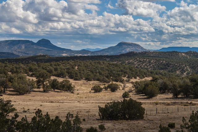 U1 Lot 47 Wild Horse Ranch, Pie Town, NM 87827 (MLS #938971) :: Campbell & Campbell Real Estate Services